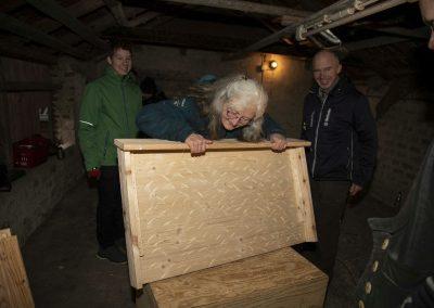 Fledermauskasten groß Dach innenWestendorf_23_klein